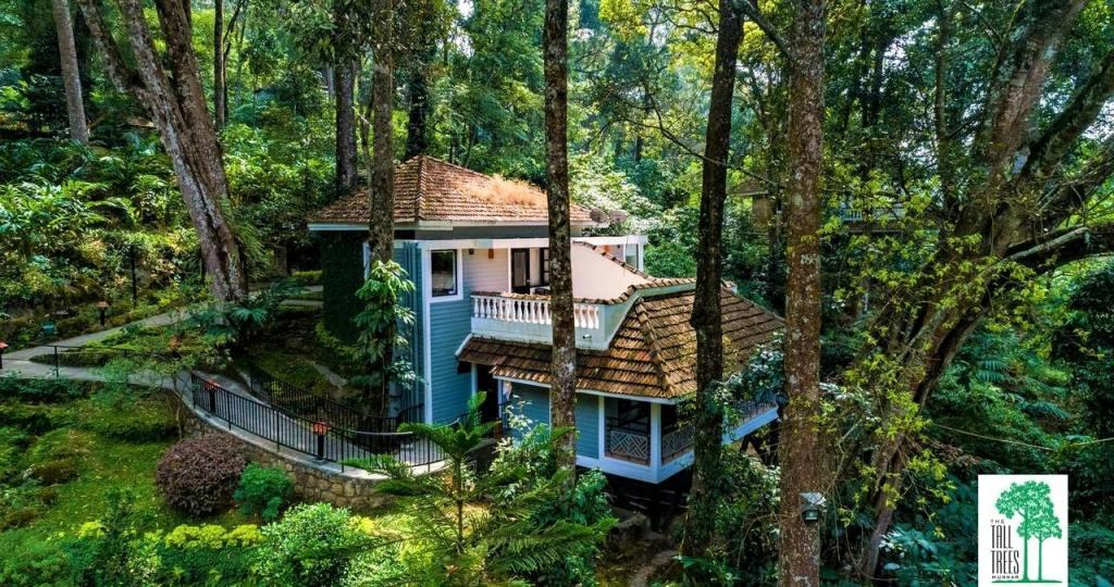 The Tall Trees, Munnar